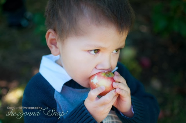Apple Valley Orchard, De Pere, WI